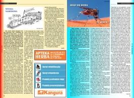 MIGS Gazeta Lokalna 1 2013 strona 5