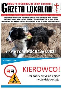 MIGS Gazeta Lokalna 2-2013 strona 1