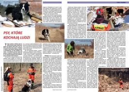 MIGS Gazeta Lokalna 2-2013 strona 4